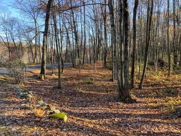 1.93AC Audubon Rd, Northampton, MA 01060 (MLS #72735832) :: Exit Realty