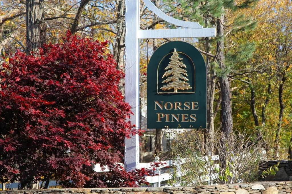 11 Norse Pines Drive - Photo 1
