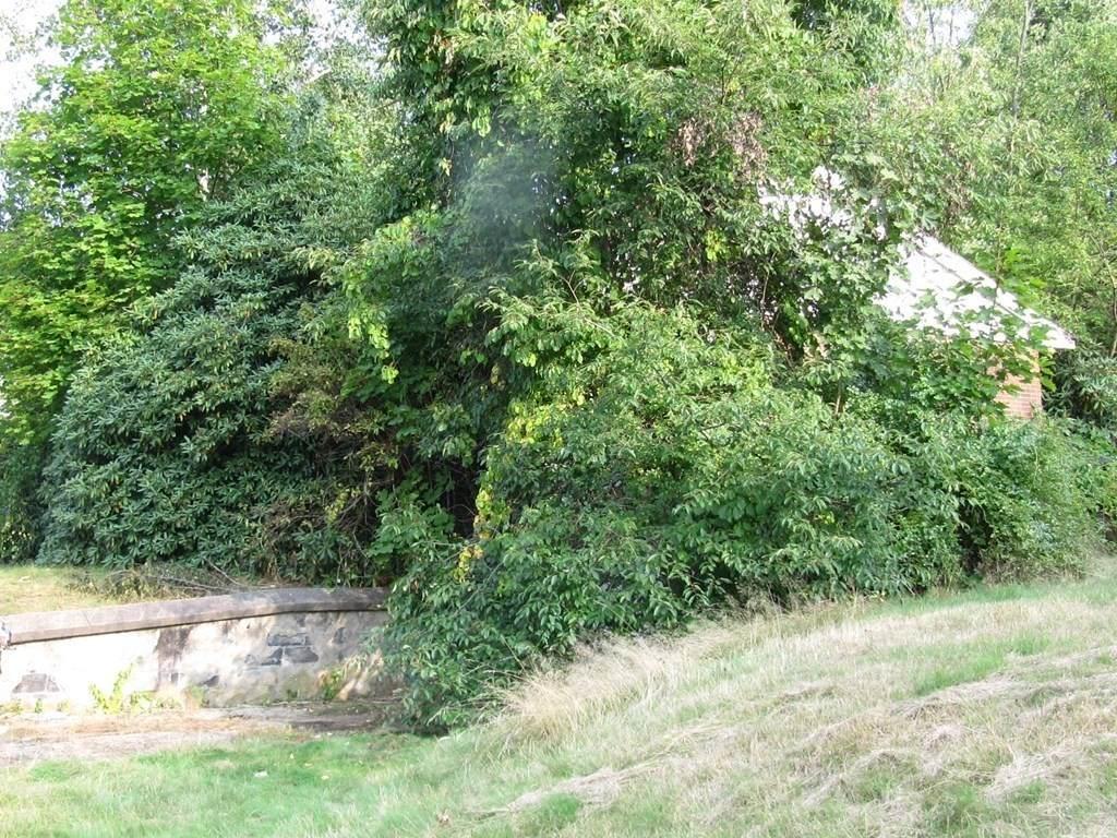 13 Marshall Terrace - Photo 1
