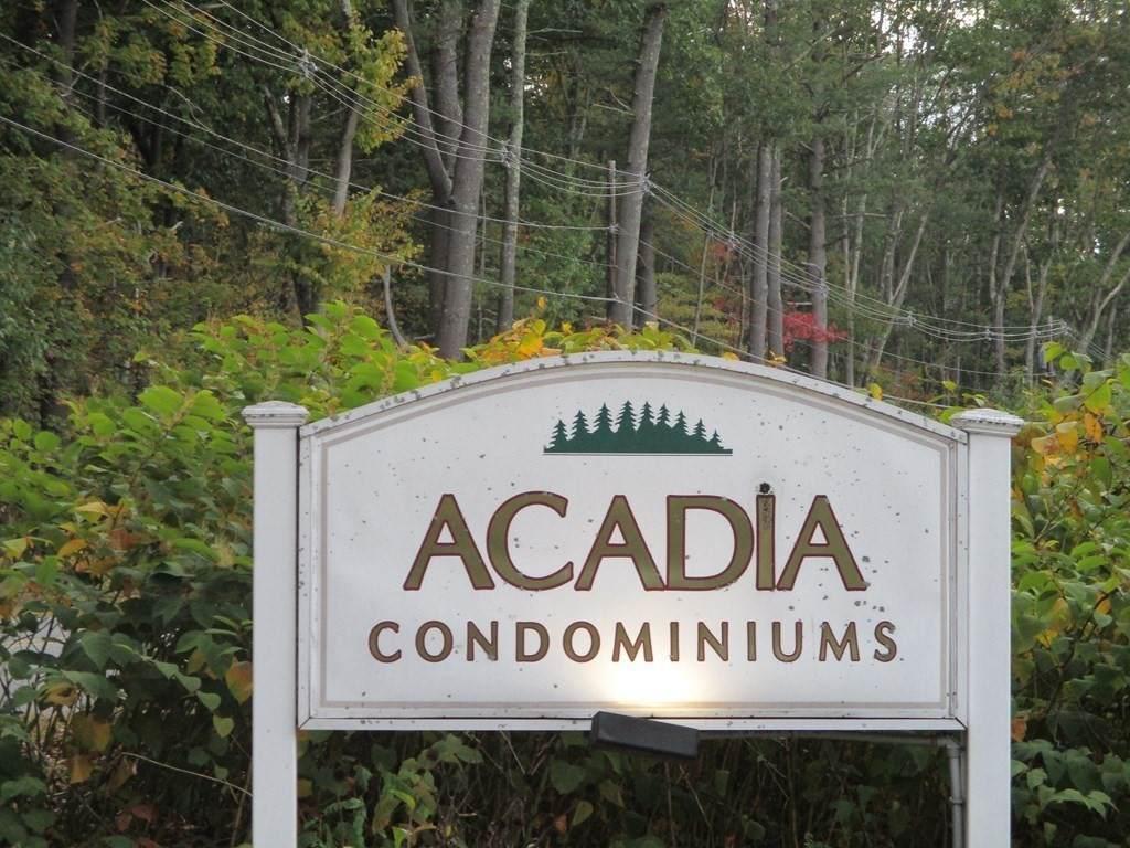 6 Acadia Kimball - Photo 1