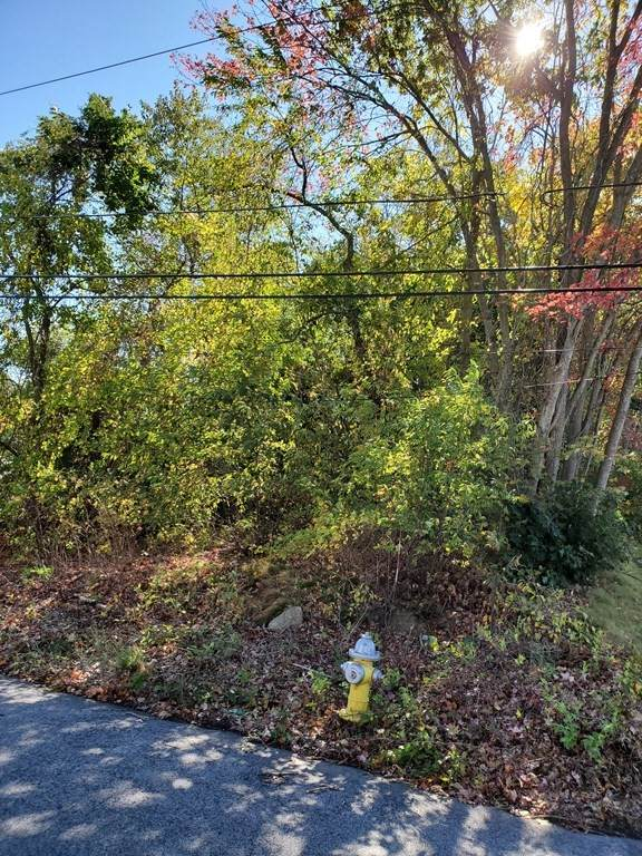 TBD Ray St L:13, Webster, MA 01570 (MLS #72742829) :: Anytime Realty