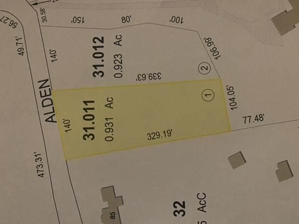 Lot 31.011 Alden Ave - Photo 1
