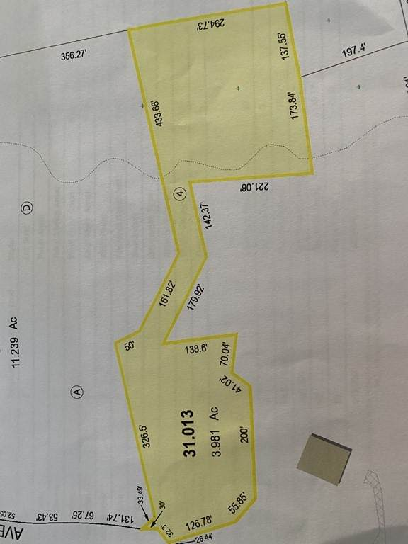 Lot 31.013 Alden Ave - Photo 1