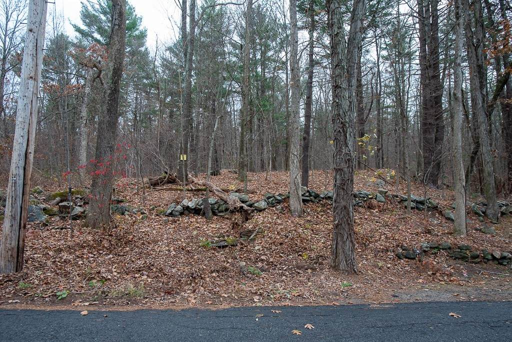 44 Old Mill Rd - Photo 1