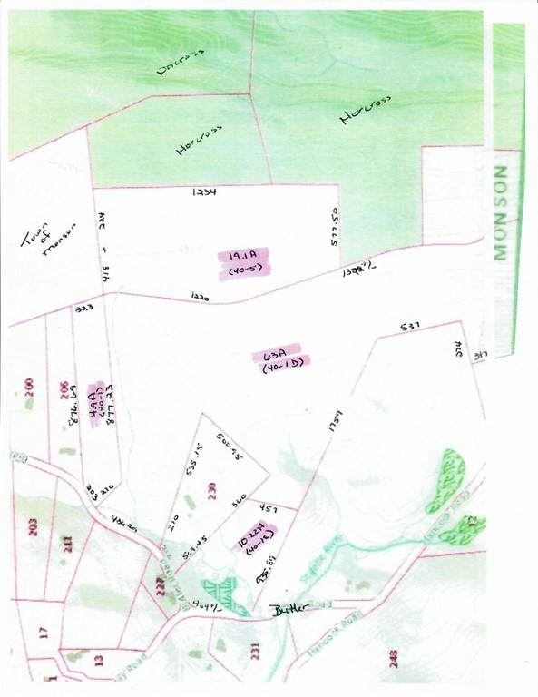 4 lots Butler Rd, Monson, MA 01057 (MLS #72761484) :: NRG Real Estate Services, Inc.