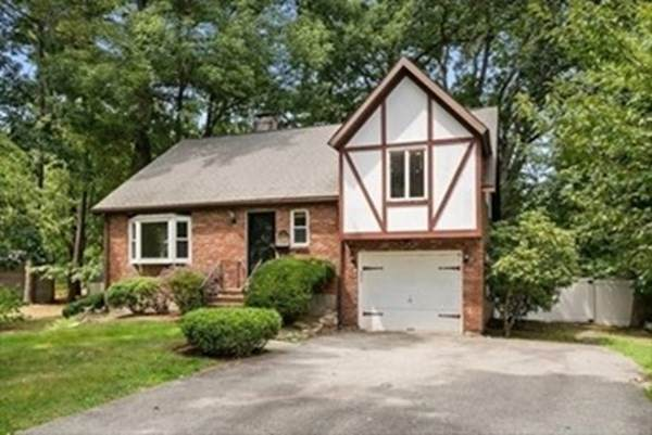31 Pinewood Rd, Wellesley, MA 02482 (MLS #72762027) :: The Gillach Group