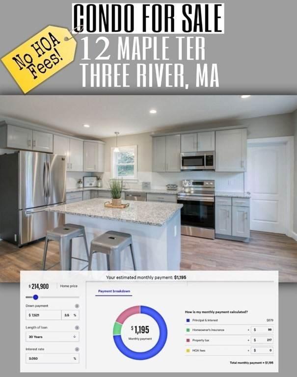 12 Maple Terrace - Photo 1