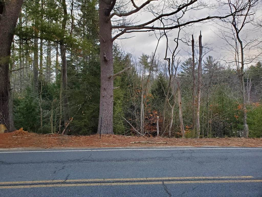 lot 1 Holtshire Road - Photo 1
