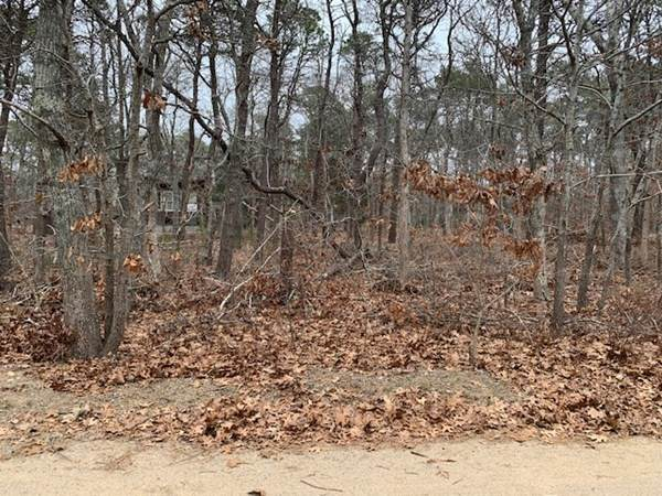 20 Fox Run Rd, Eastham, MA 02642 (MLS #72778246) :: Kinlin Grover Real Estate