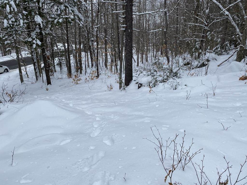 0 Spruce Corner Rd. - Photo 1