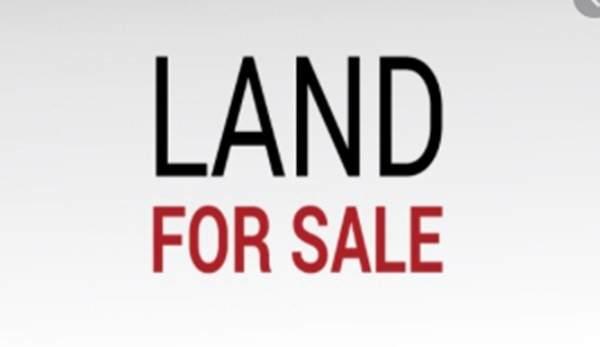 64 School Ave, Waltham, MA 02453 (MLS #72803210) :: Trust Realty One