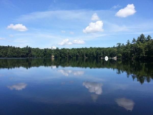 4 Adams Pond Rd - Photo 1