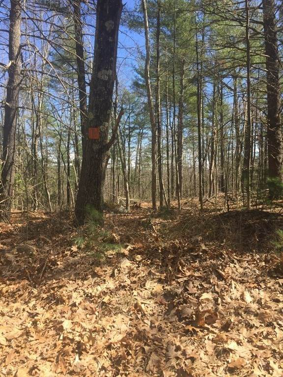 Lot 10 Town Farm Rd, Monson, MA 01057 (MLS #72812915) :: DNA Realty Group