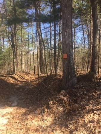 Lot 12 Town Farm Rd, Monson, MA 01057 (MLS #72812920) :: DNA Realty Group