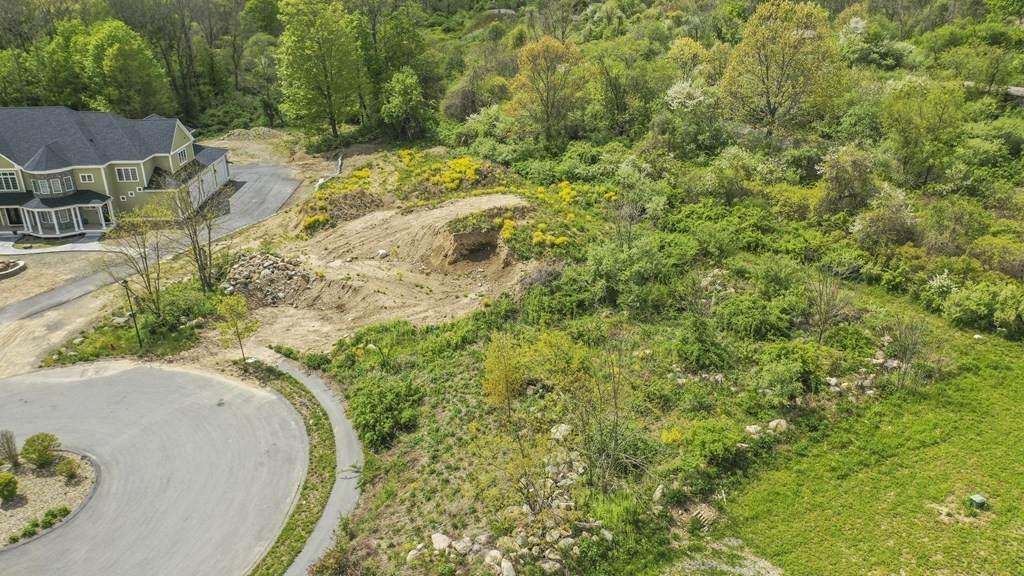 19 Bridle Spur Lane - Photo 1