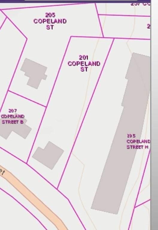 201 Copeland Street - Photo 1