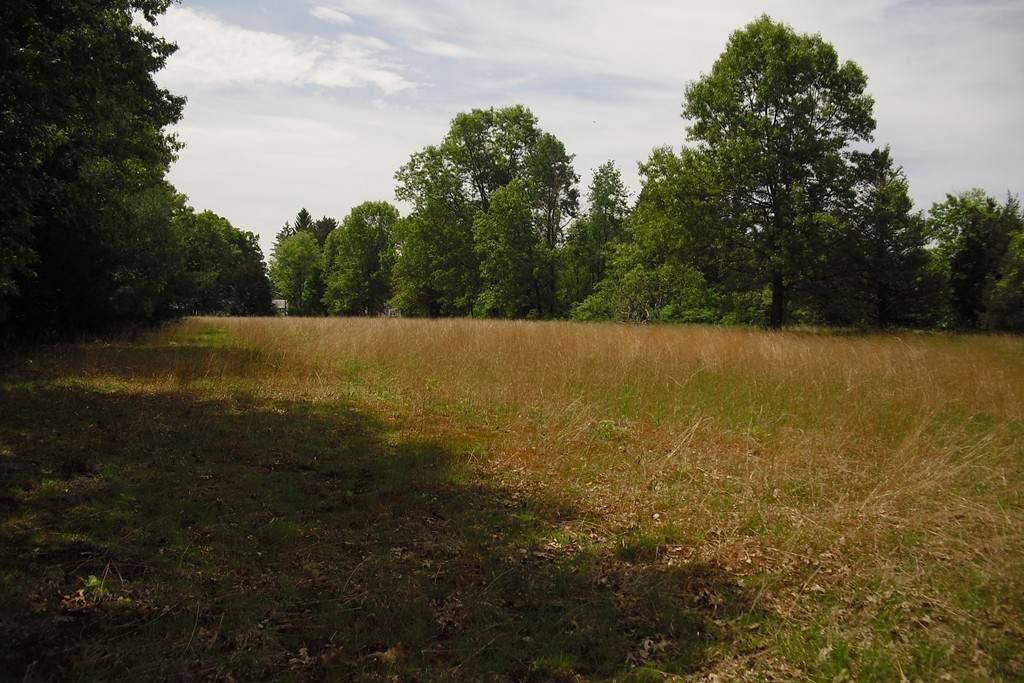 Parcel 48 Amherst - Photo 1