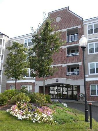 318 Rindge Ave #307, Cambridge, MA 02140 (MLS #72895970) :: Boylston Realty Group