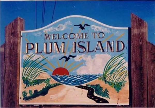 123abc Plum Island - Location St, Newbury, MA 01951 (MLS #72899580) :: East Group, Engel & Völkers