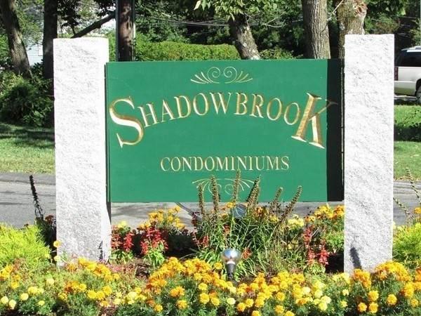 5 Shadowbrook Ln #28, Milford, MA 01757 (MLS #72909257) :: Zack Harwood Real Estate | Berkshire Hathaway HomeServices Warren Residential