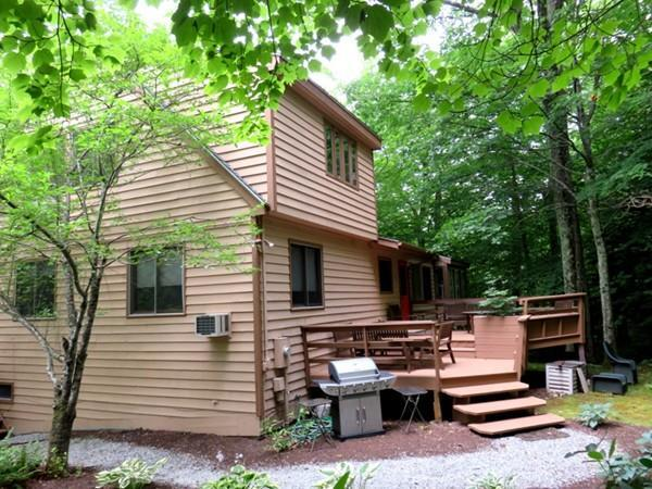 307 Sanctuary Ln, Sandisfield, MA 01255 (MLS #72291508) :: Charlesgate Realty Group