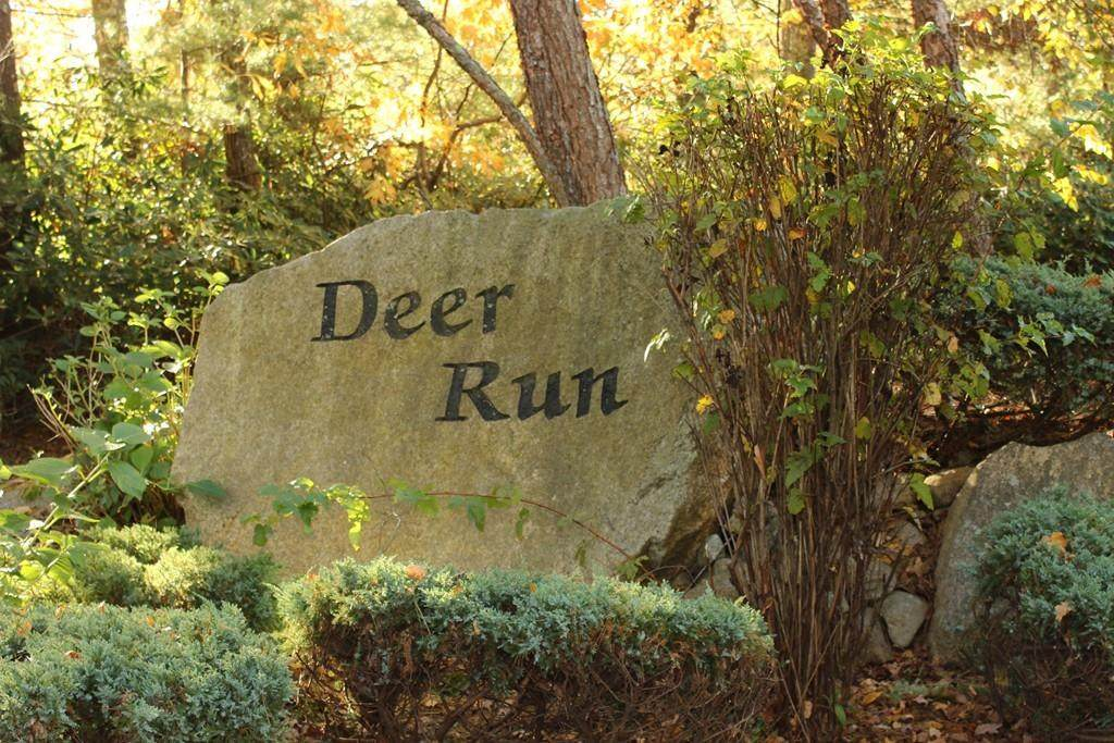 Lot 4 Deer Run - Photo 1