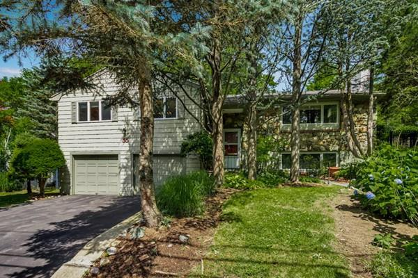 55 Wayne Rd, Newton, MA 02459 (MLS #72529839) :: Vanguard Realty