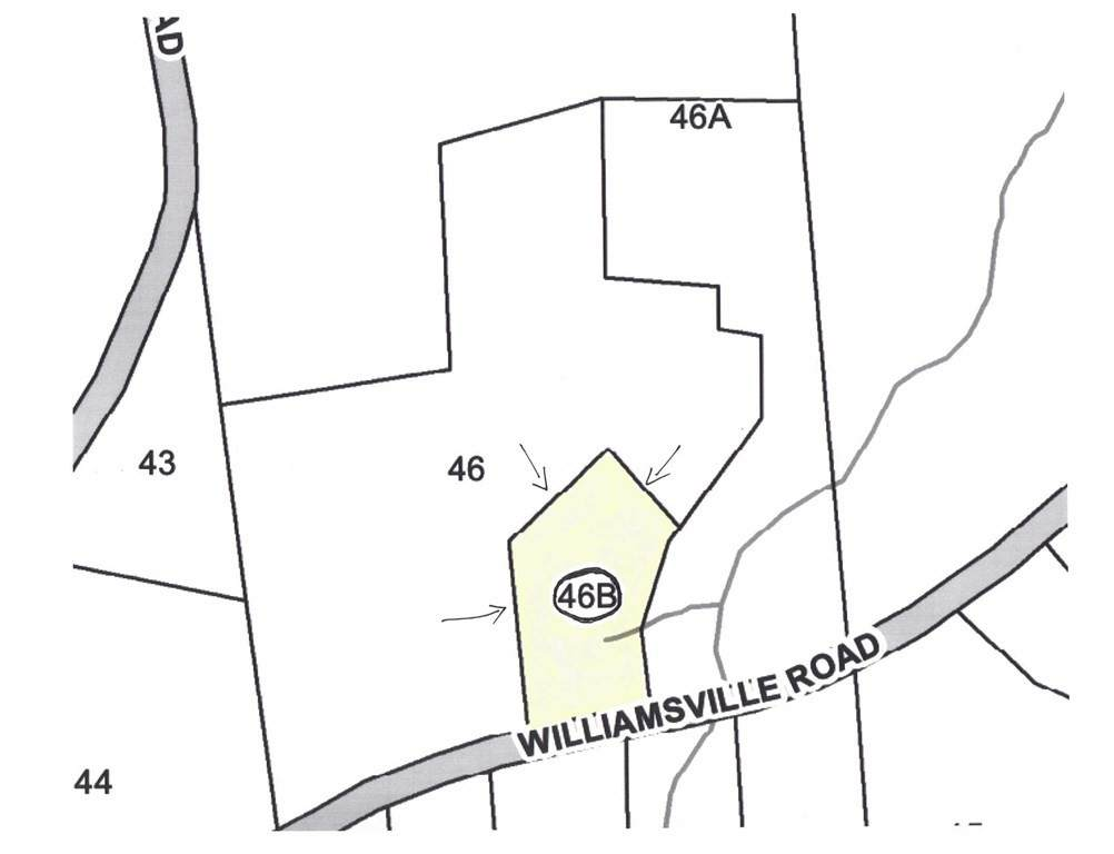 Lot A Williamsville Rd - Photo 1