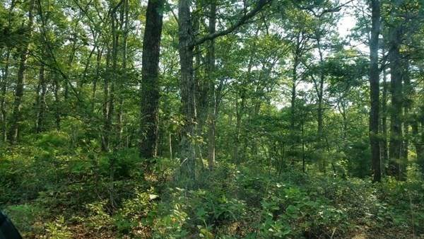Lot 367 Ashumet, Falmouth, MA 02536 (MLS #72796380) :: The Ponte Group