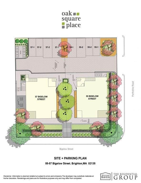 55 Bigelow Street #2, Boston, MA 02135 (MLS #72822893) :: Conway Cityside