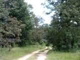 5914 Hunters Woods Drive - Photo 3
