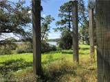 10925 Riverview Nursery Road - Photo 21