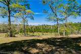 17401 Bee Gum Road - Photo 44