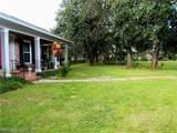 708 Spring Oaks Court - Photo 2