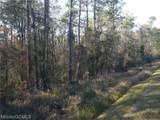 0 Celeste Road - Photo 5