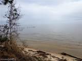 0 Dauphin Island Parkway - Photo 3