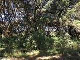41 Kipling Trace - Photo 1
