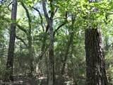 4609 Semmes Woods Drive - Photo 2