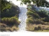 1409 Olive Lane - Photo 15