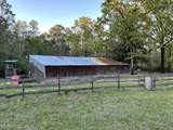 4400 Wilmer Road - Photo 32
