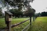 11579 Argyle Road - Photo 25