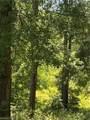 0 Delta Woods Drive - Photo 3