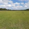 6681 Half Mile Road - Photo 7