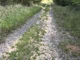 0 Celeste Road - Photo 4