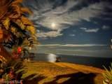 13751 Dauphin Island Parkway - Photo 42
