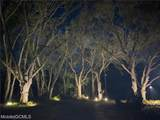 0 Petiole Drive - Photo 3