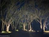 0 Petiole Drive - Photo 8