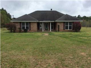 5275 Dawes Rd, Grand Bay, AL 36541 (MLS #543524) :: Jason Will Real Estate