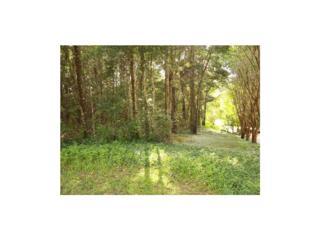 103 Crofton Court, Daphne, AL 36526 (MLS #545100) :: Jason Will Real Estate