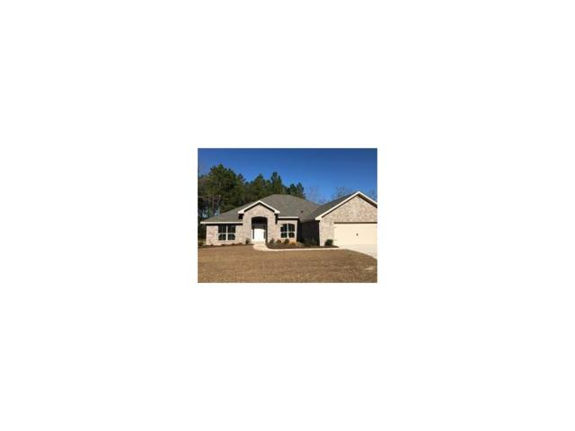 13174 Royster Court, Foley, AL 36535 (MLS #608054) :: Jason Will Real Estate